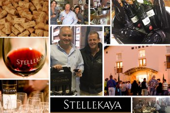 Ceragran's Second Cape Town Wine Tasting & Networking Event